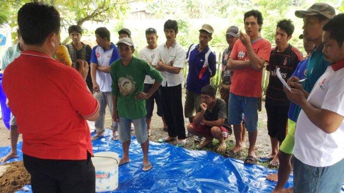 Program PKM Ristekdikti, Politani Pangkep Berdayakan Masyarakat di Desa Sawaru
