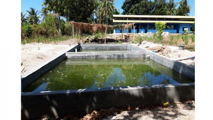 Ada Sentra Produksi Benih Perikanan di Politani Kupang