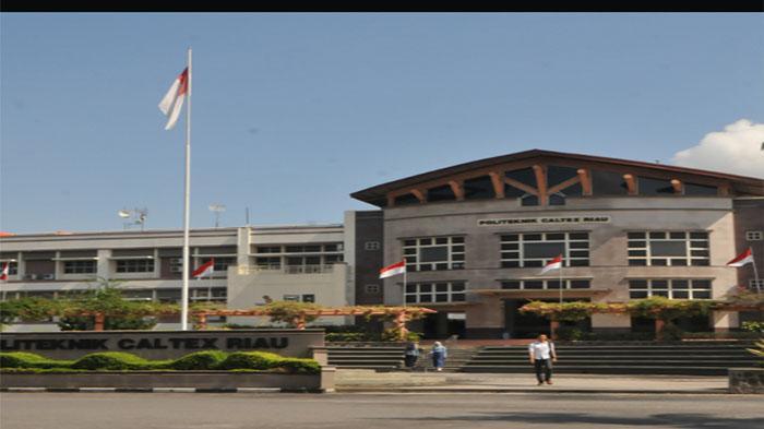 Mahasiswa PCR Bangun Website Info Publik untuk Pemrov Riau