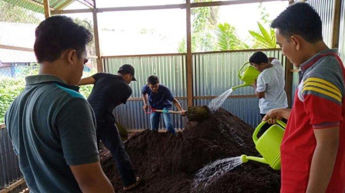 Politani Pangkep Produksi Pupuk Kompos dan Pupuk Cair dari Limbah Sapi